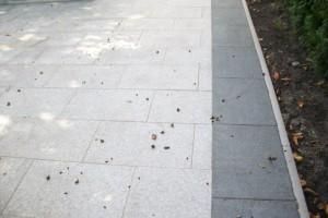 Keramikfliese im Terrassenbereich